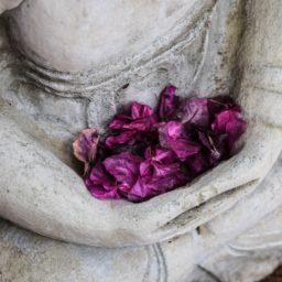 ¿Qué es la meditación?       – sus beneficios, la respiración, posturas y mantras –